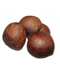 Dried Coconut Kernel/Copra